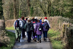 Alton Walking Festival
