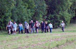 Bedfordshire Walking Festival
