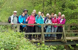 Mole Valley Spring Walking Festival
