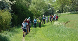 Rutland Walking Festival