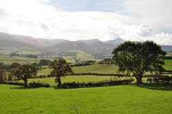 Talgarth Walking Festival